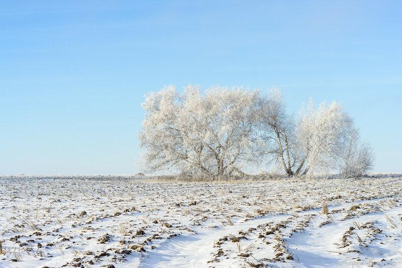 Даешь правильную зиму!