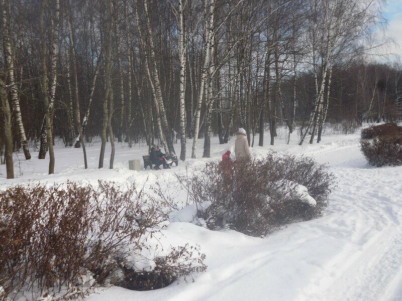 И снова лыжи, и снова природа.