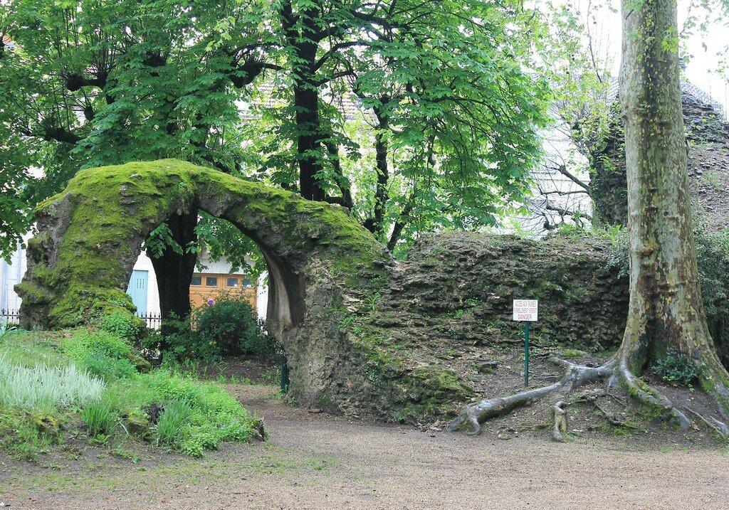 Перигё. Сад Римской арены (Jardin Des Arènes Romaines)