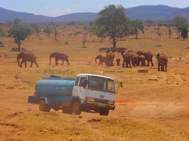 © Patrick Kilonzo Mwalua  Каждый день онтратит надорогу несколько часов, чтобы наполнить вод