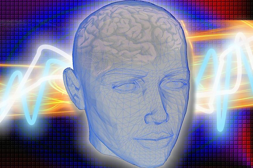 Ученые: мужской мозг больше женского