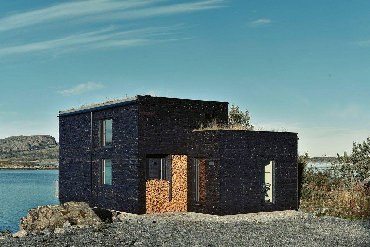 фасад дома из обожженой древесины
