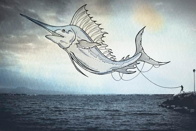 Oceanographies - Les creatures volantes de Giulia Pex