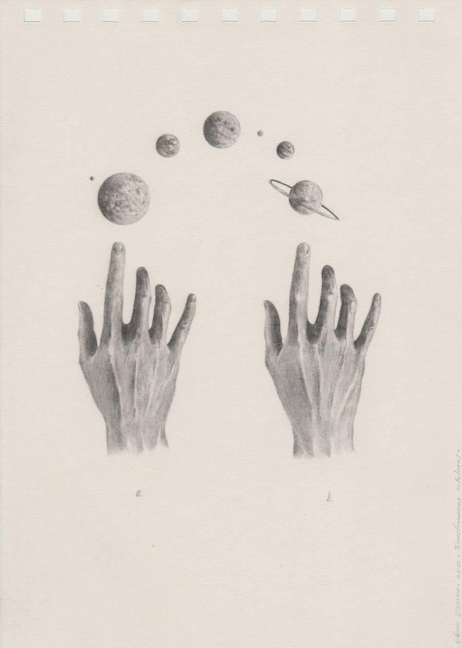 Anatomical Studies Drawings