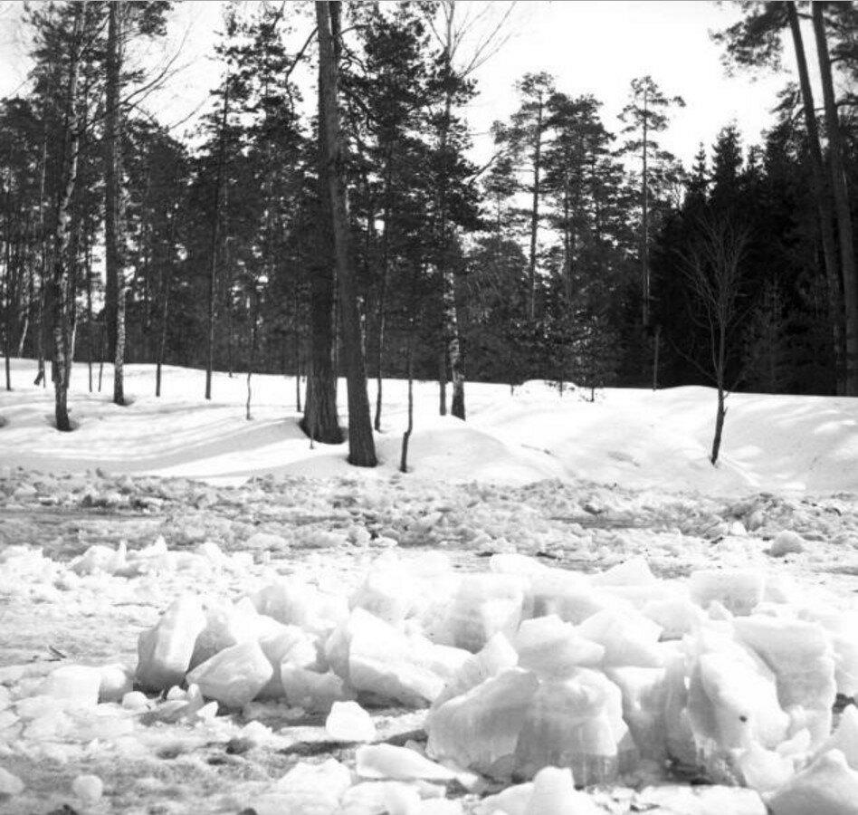 1904. Прогулка в Сокольники. Ледяные глыбы