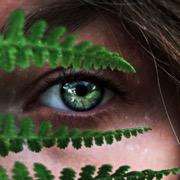 глаз зеленый