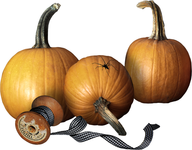 Steampumpkin_Priss_cl07 (1).png