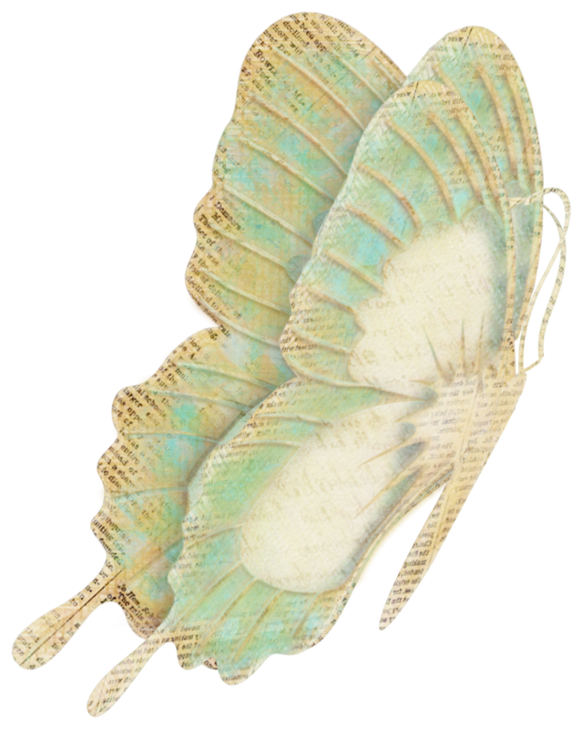 vjs-cherishtheday-butterfly-02.png