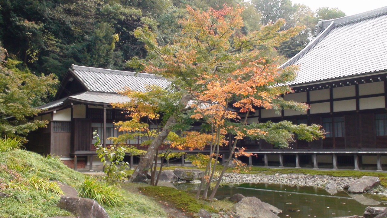 Осенний город Камакура