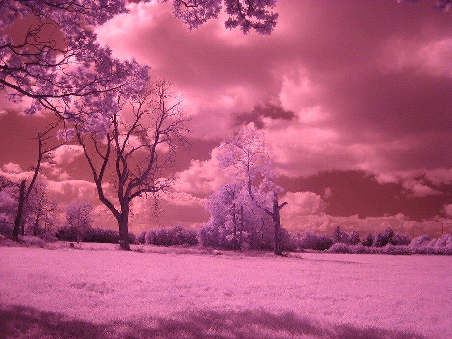 Картинки нереальной красоты природы