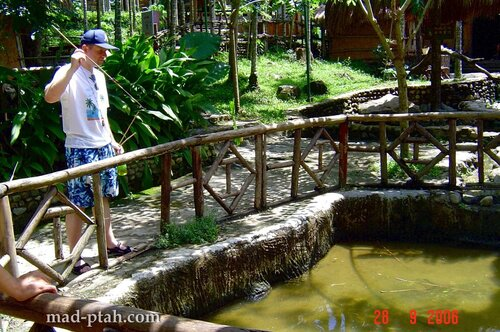 рыба, дротик, рыбак, деревня ли и мяо, хайнань, китай