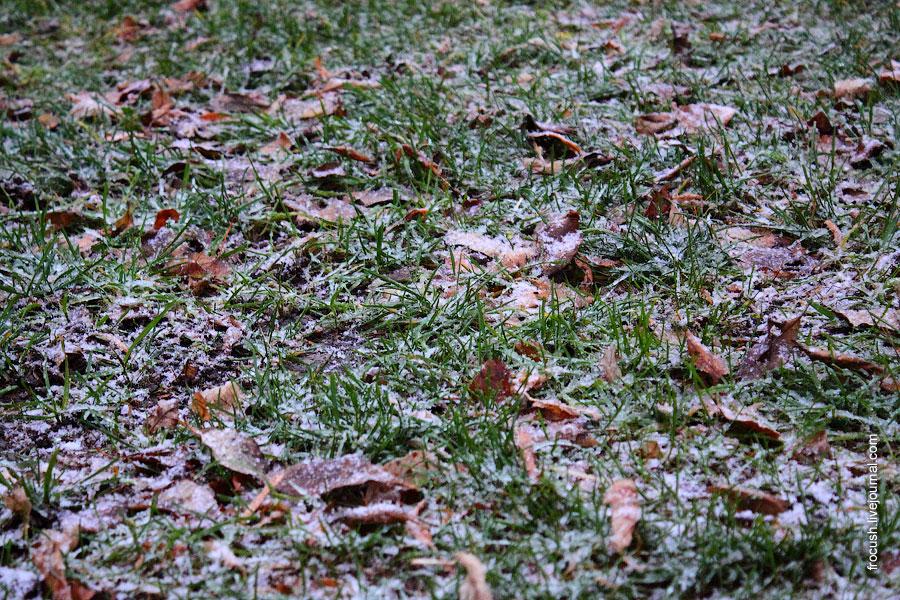 снег в СРП