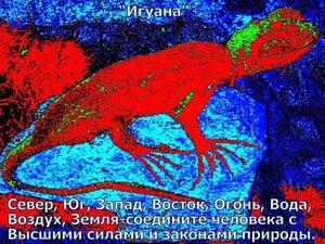 0_5134a_84199ed6_M.jpg