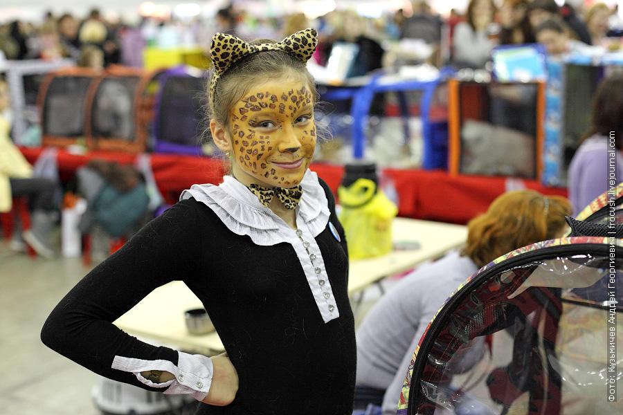 девочка - бенгал на выставке кошек