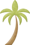 KMILL_palm-2.png