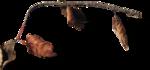 ldavi-ThePoet'sKeepsakes-driedleaves2.png