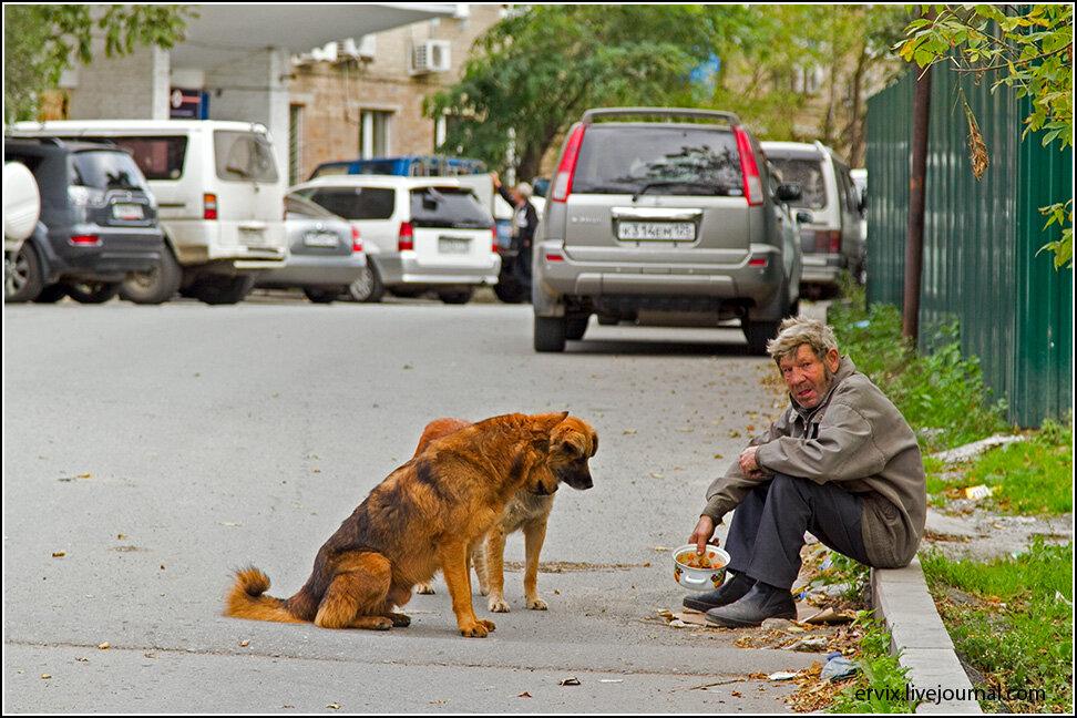 Зато бомжи тут добрые - собак бездомных подкармливают.