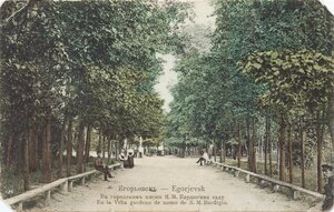 В городском им. Н.М. Бардыгина саду