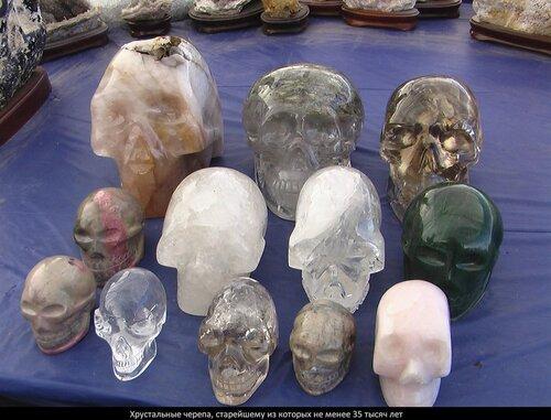Древние черепа