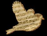 cajoline_musicmusic
