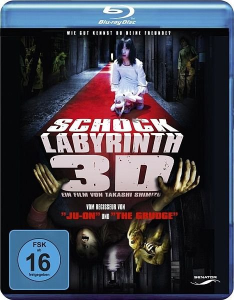 Лабиринт страха / The shock labirinth (2009/HDRip/1400Mb/BDRip/720p)