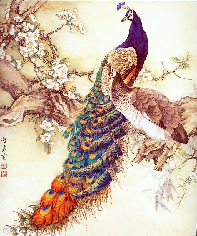 Павлины 459,Luca-S,Наборы для вышивания,РУКОДЕЛИЕ,птицы,счетный крест.