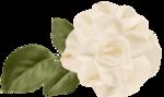 «Скрап-набор Для Матери»  0_5d000_4ac26266_S