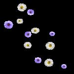 «purple rain»  0_5d804_32909b4f_S