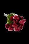 «Скрап -набор Мой сад» 0_5e0e6_b37b7806_S