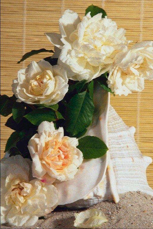 Цветы на резинке  из атласных лент 131