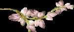 «Dreamin Pink» 0_99b00_627dc730_S
