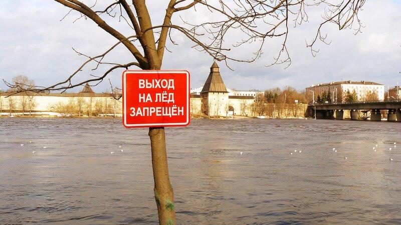 http://img-fotki.yandex.ru/get/5804/art-pushka.69/0_54b51_68e2798c_XL.jpg