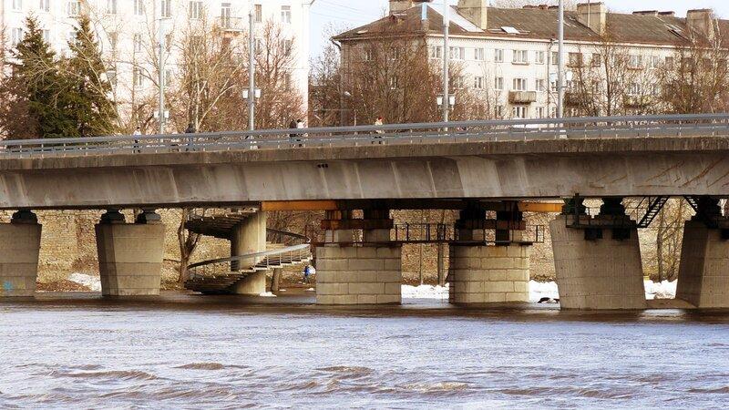 Разлив рек во Пскове