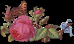 rosenrosa019.png