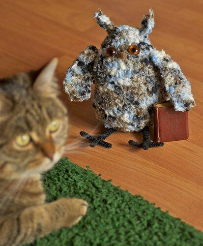 Сова и котик