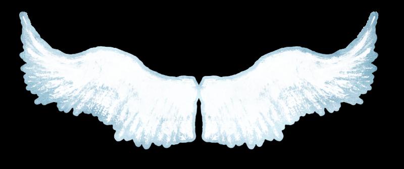 анимационная картинка крыла
