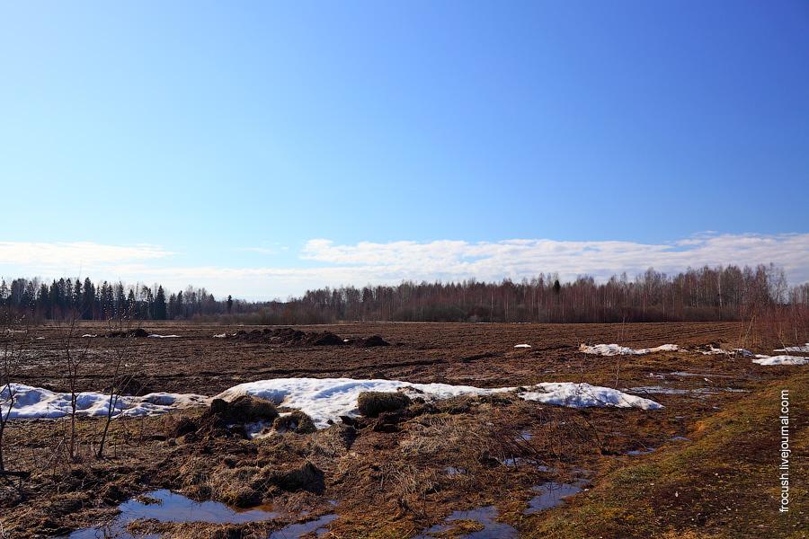 Поле рядом с деревней Белоглазово
