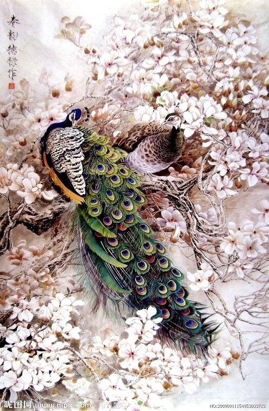 Авторы.  Марка нитей.  Схемы вышивки.  Близнецы.  Теги.  Sobiana. wramune. павлины.  Anchor, 70 цветов.