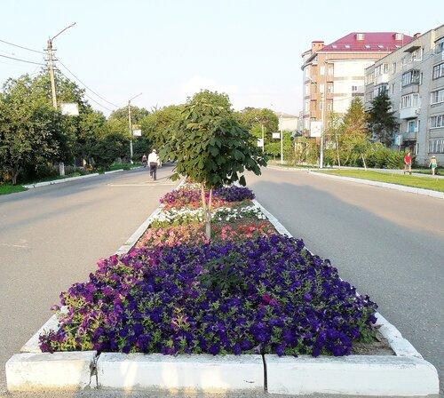 Цветы...