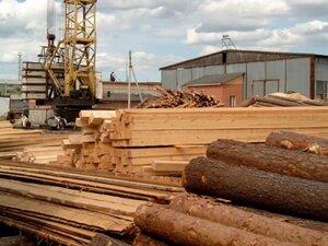 На Дальнем Востоке перекрыт крупный канал контрабанды древесины