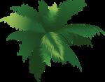 пальма2.png