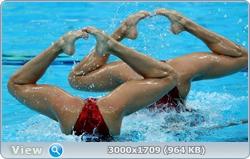 http://img-fotki.yandex.ru/get/5805/13966776.105/0_881fd_cdb59f65_orig.jpg