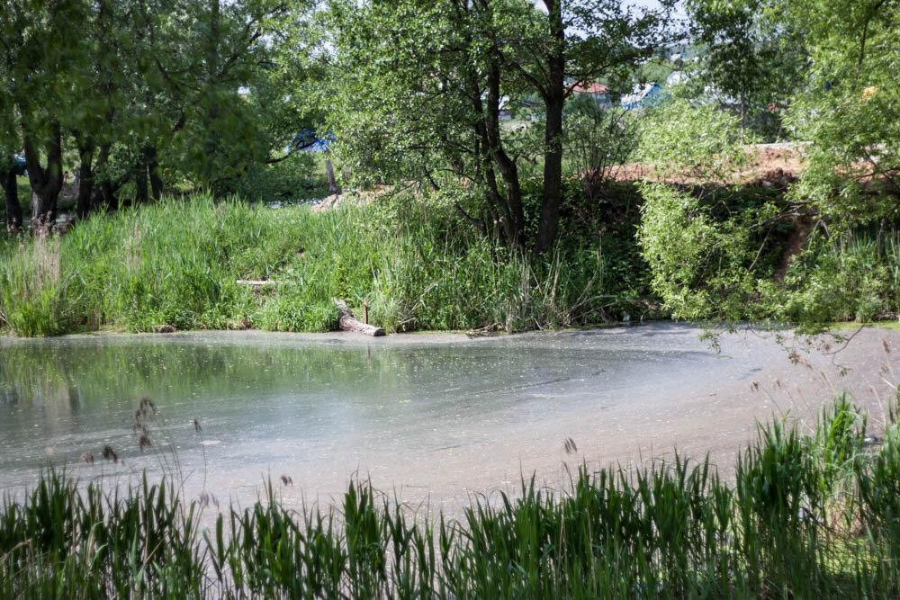 Плотина на Рожайке