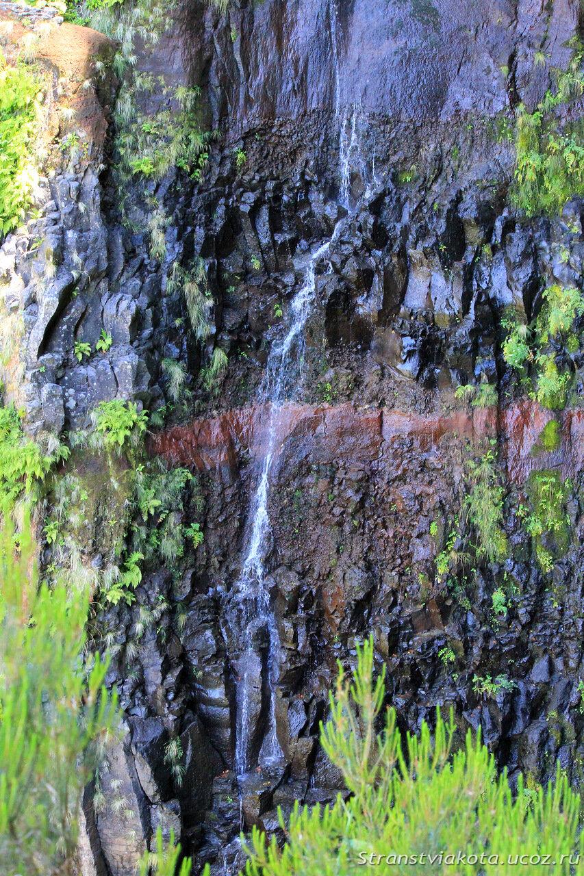 Мадейра, водопад Risco