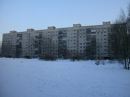 ул. Подвойского 48к2