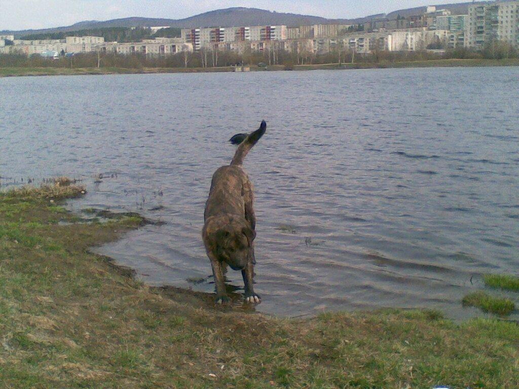 Озеро Тарелка. Город Златоуст