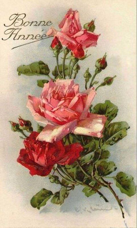 К. Кляйн. Розы..