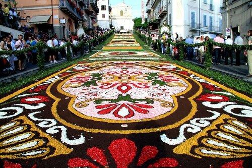цветы Италии