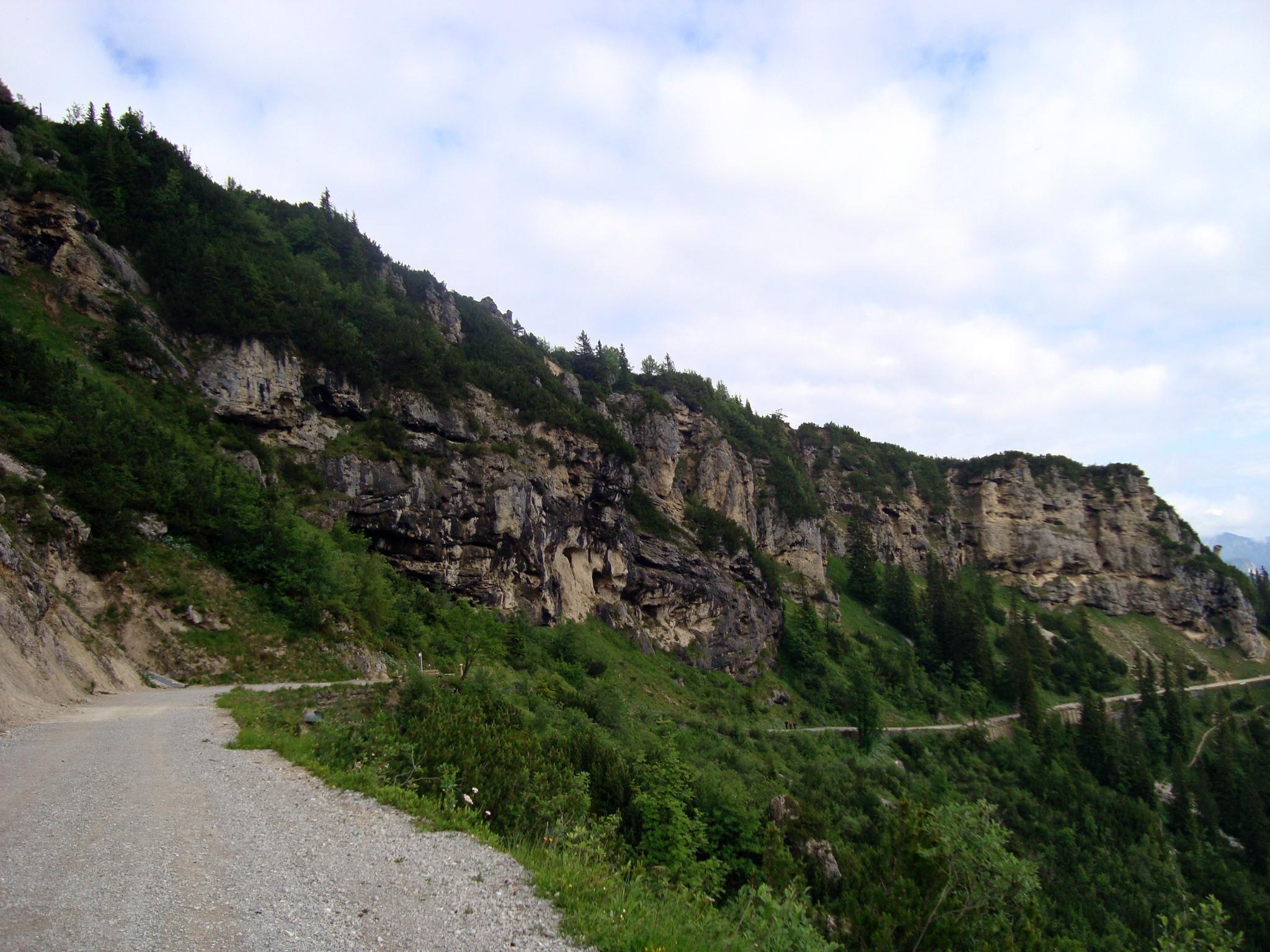 Альпийская дорожка
