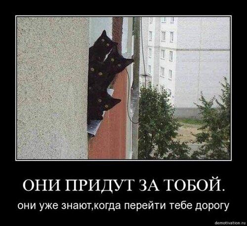 http://img-fotki.yandex.ru/get/5806/124059564.0/0_667da_d83fca66_L.jpg